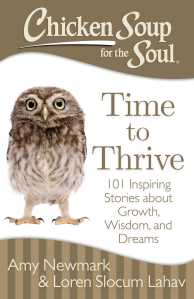 Time to Thrive chicken Soup for the Soul Book