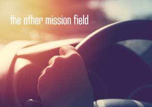 the-other-mission-field