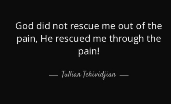 quote-god-did-not-rescue-me-out-of-the-pain-he-rescued-me-through-the-pain-tullian-tchividjian-128-47-56